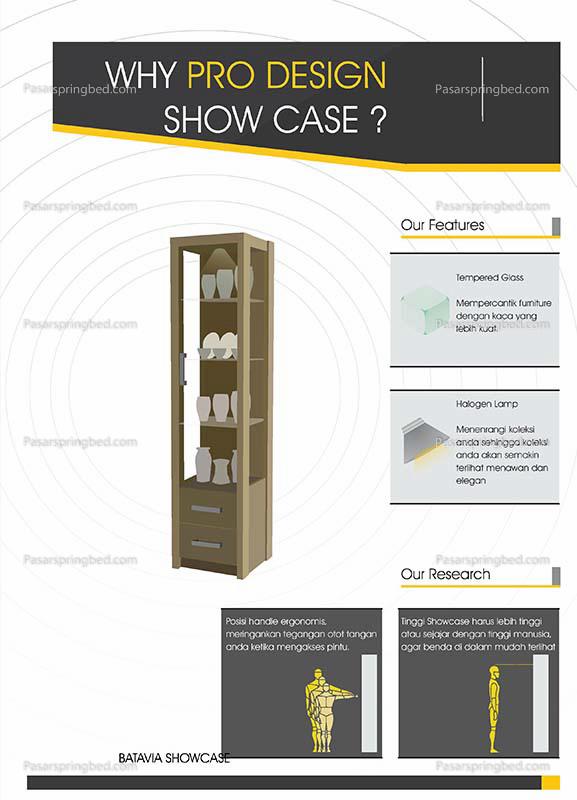 Pro Design Show Case 1